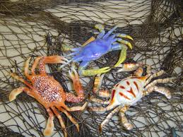 net with crabs