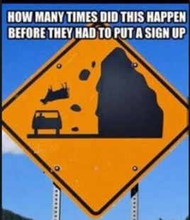 road-sign-w-cow-falling