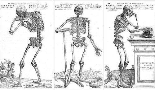 skeleton_thinking